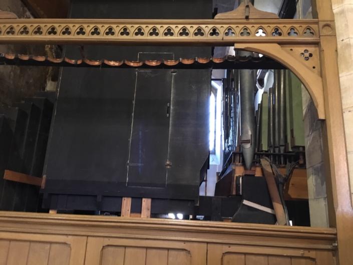 Organ restoration